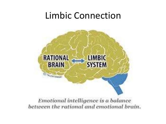 Emotional Intelligence Balance